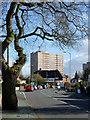 SO8897 : Bhylls Lane in Merry Hill, Wolverhampton : Week 9