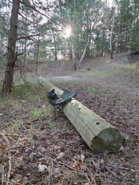 Fallen pole