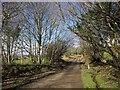 SX3273 : Lane to Linkinhorne by Derek Harper