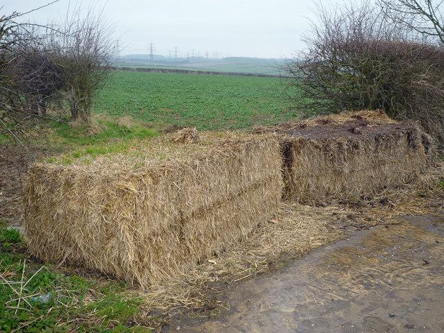 Field Entrance near Barrow Wold Farm