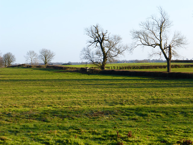 Pasture, Whitchurch
