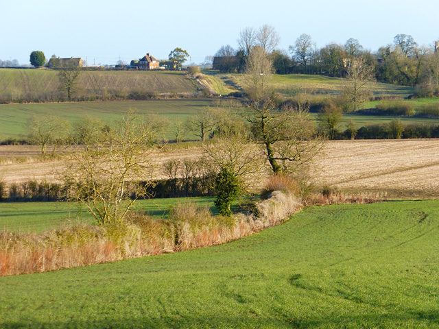 Farmland, Whitchurch