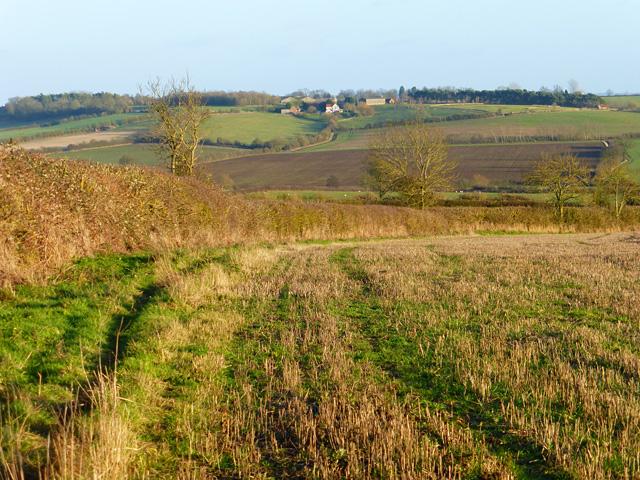 Farmland, Hardwick