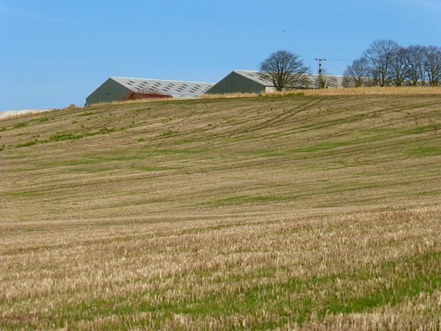 Farmland, Creslow