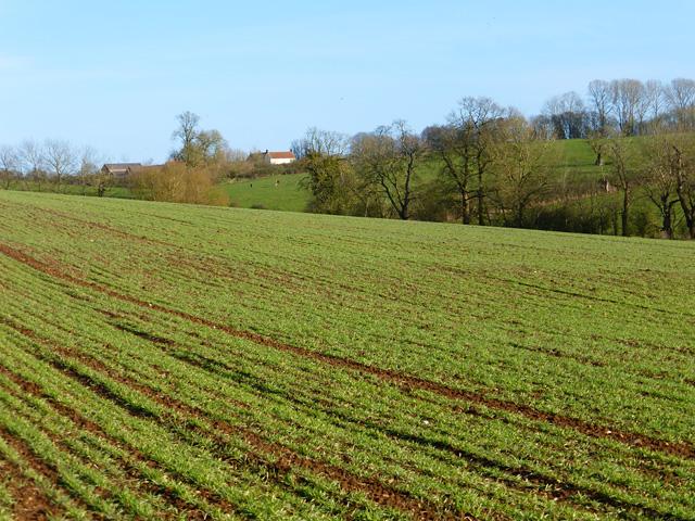 Farmland, Stewkley