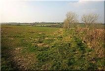 SX2793 : Field near Clubworthy by Derek Harper