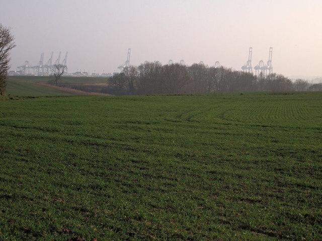 Farmland with Felixstowe docks in the background