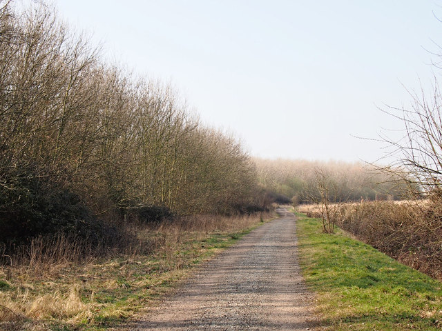 Path to Trimley Marshes