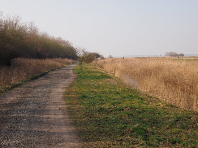 Path approaching the boundary of SWT Trimley Marshes