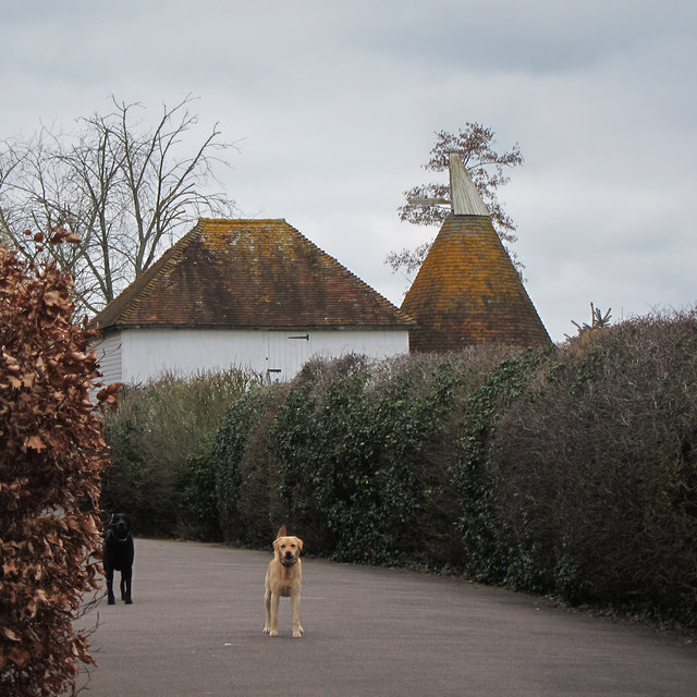 The oast house water lane farm water oast house for The headcorn minimalist house kent