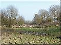 Dist:0.4km<br/>A long watermeadow beside the stream that runs south of Bridge End Farm.