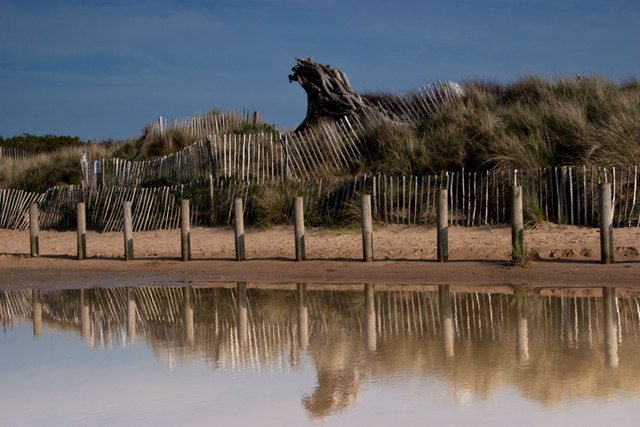 Wood sculpture, Formby