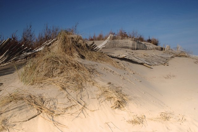Collapsing fences, Formby dunes