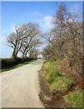 SX2592 : Lane near Higher Troswell by Derek Harper