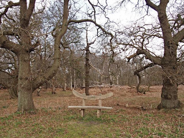 Seat, Captain's Wood