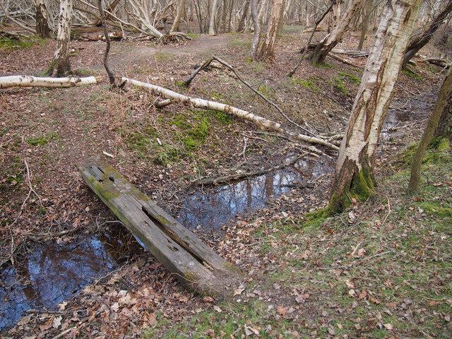 Rickety footbridge over drain