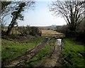 SX2291 : Field entrance east of Canworthy Water by Derek Harper
