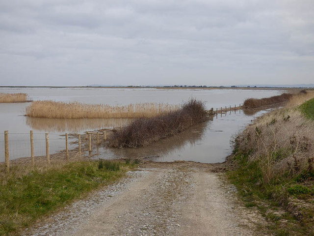 Steart reserve, old farm track well flooded at high water