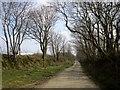 SX1989 : Lane to Trewonnard by Derek Harper