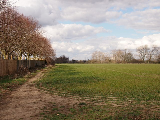 Field ,Ipswich Northern Fringe north of Valley Road
