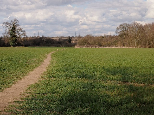 Path across Field, Ipswich Northern Fringe
