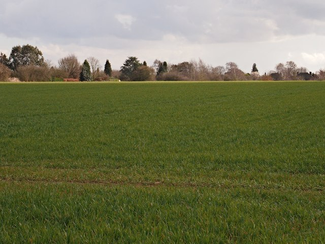 Field and back of houses on Westerfield Road, Ipswich Northern fringe