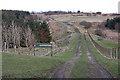 NS8370 : Footpath to Limerigg Wood by Anne Burgess