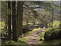 NN2101 : Footbridge over the Allt Airigh na Creige by Alec MacKinnon