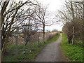 NZ3661 : Public bridleway near East Boldon by Malc McDonald