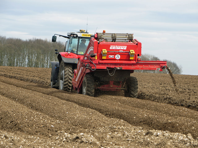 Preparing Potato Beds on Saxby Wold
