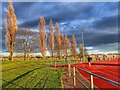 NZ3014 : Athletics Track, Eastbourne Leisure Centre : Week 15