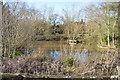 TQ5939 : Lake, Dunorlan Park by N Chadwick