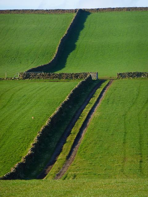 Farmland, Kirkoswald