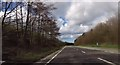 SJ5562 : Lay by on Tarporley by pass by John Firth