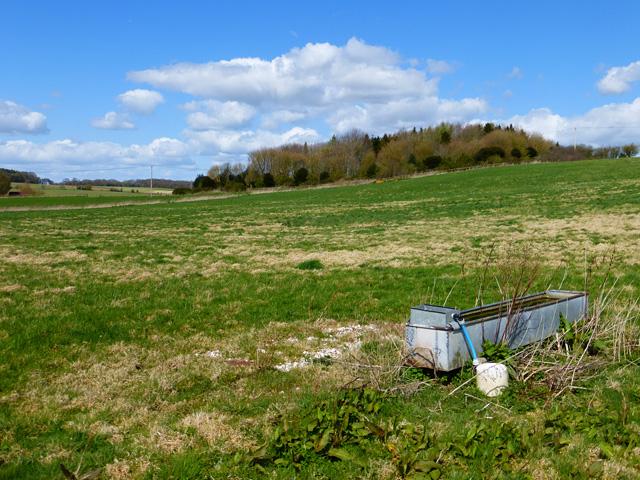 Farmland, Little Bedwyn