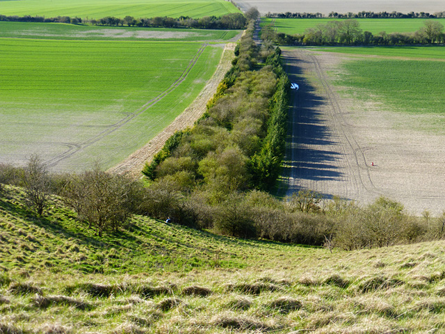 Farmland beneath downs, Shalbourne