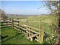 SP7414 : Downhill Path at Upper Winchendon by Des Blenkinsopp