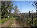 SX3672 : Track, Lower Crockett Farm by Derek Harper