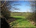 SX3672 : Fields near Holmbush by Derek Harper