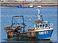 NM8529 : Orion in Oban Bay : Week 16