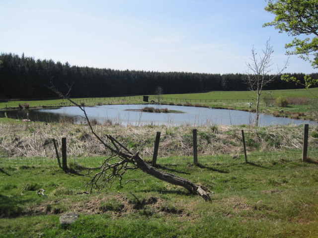 fishing lake near shiel dykes les hull geograph