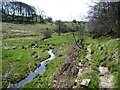 """SE0733 : """"Walk upstream near a beck on your left"""" by Christine Johnstone"""