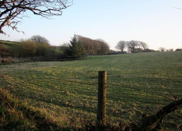 Field near Davidstow