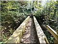SJ9493 : Footbridge in Pole Bank Woods by Gerald England