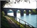 NY3856 : Disused railway viaduct, Carlisle by Malc McDonald