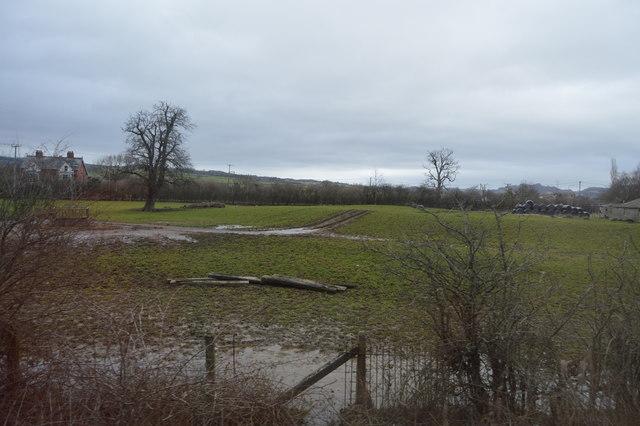 Muddy field, Caersws