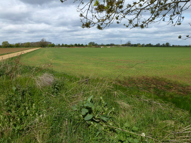 Track and Meadow Field near Greatford, Lincolnshire