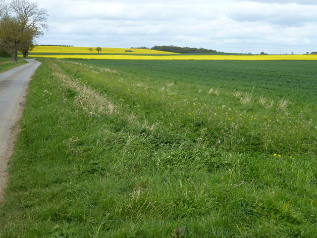 The road to Obthorpe, Lincolnshire
