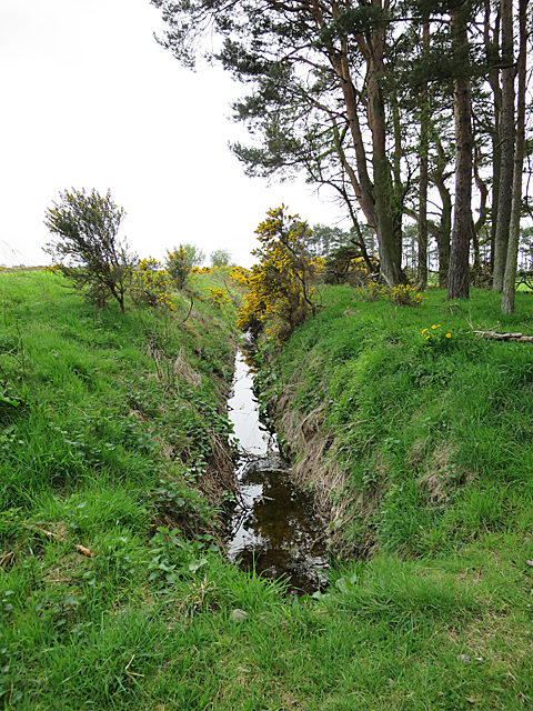 Ditch near Nether Unthank