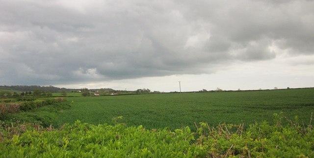Farmland near Sutton Mallet